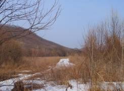 Сдам в аренду земельный участок 1,4 га с. Горное Надеждинского района. Фото участка