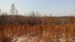 Земельный участок 20 соток на Глобусе. 2 000кв.м., собственность, от частного лица (собственник). Фото участка