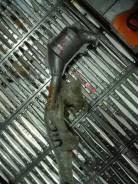 Катализатор. Subaru Impreza Subaru Forester, SF5, SF9