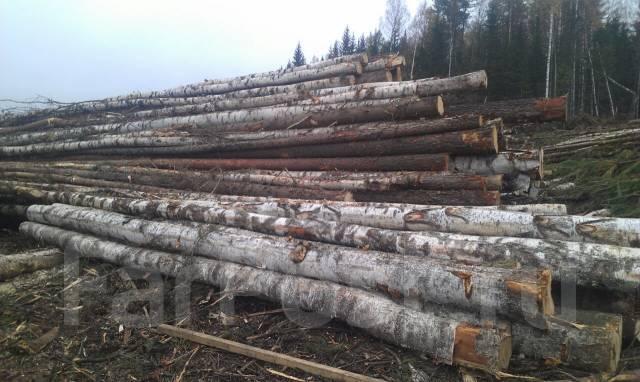 Подготовка участка под строительство, Вырубка деревьев, Планировка