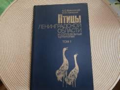 Мальчевский, Пукинский. Птицы Ленинградской области и сопредельных терр