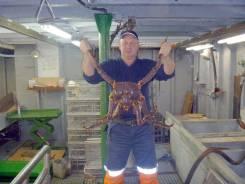 Мастер добычи рыбы. Средне-специальное образование, опыт работы 22 года