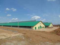 Строительство свинарника в Хабаровске. Под заказ