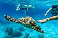 Индонезия. Бали. Пляжный отдых. Новинка! о. Гили - райские острова! Снорклинг с черепахами!