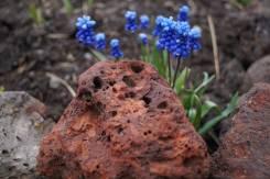 Камни и каменные крошки.