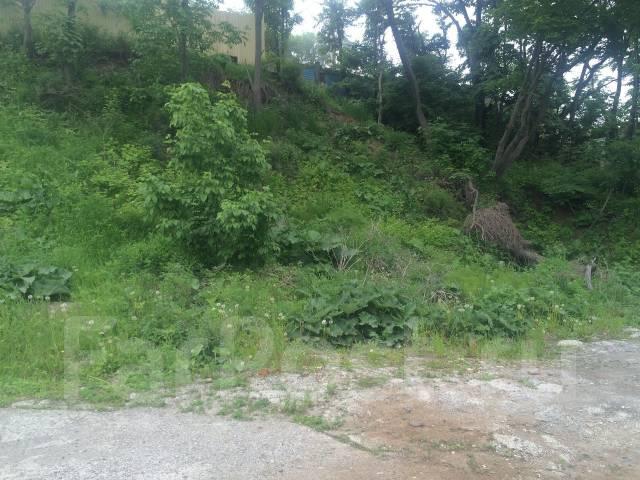 Сдается в аренду земельный участок. Фото участка