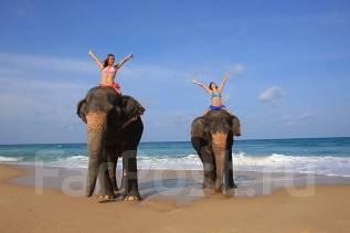 Таиланд. Паттайя. Пляжный отдых. Паттайя - пляжный отдых. Скидки на раннее бронирование!