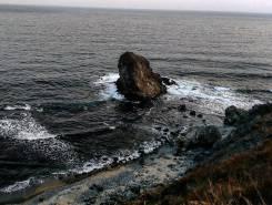 Сдам дом у моря на летний период П. Зарубино. От частного лица (собственник)