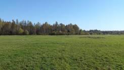 Земельный участок у леса. 1 000кв.м., собственность, электричество, вода