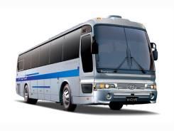 Аренда автобусов 14-60 мест. С водителем