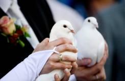Свадебная фотография в Хабаровске