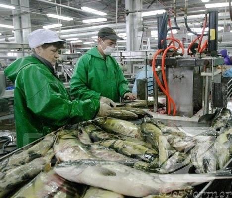 Работа рыбообработчик береговой завод что