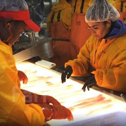 Работа рыбообработчик береговой завод думаю, что