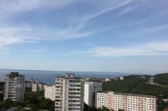 1-комнатная, улица Чкалова 30. Вторая речка, 40кв.м. Вид из окна днем