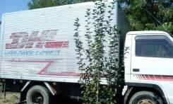 Isuzu Elf. Продам грузовик , рефрижератор, 4 334 куб. см., 3 200 кг.
