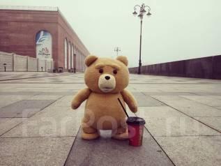 Плюшевый медведь TED
