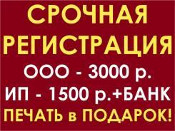 Срочная Регистрация компаний ООО / ИП под ключ. Центр / 2 Речка