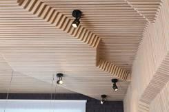 Параметрические потолки, декор стен