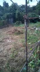 Продажа земельного участка в центральной части города. 700 кв.м., собственность, электричество, вода, от агентства недвижимости (посредник)