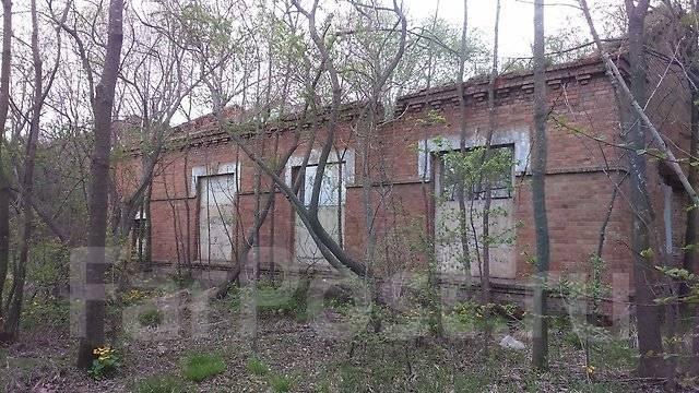 Предлагается в аренду земля на острове Русский
