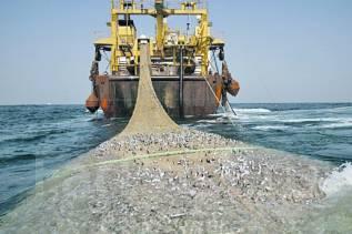 Матрос-рыбообработчик. Требуются матросы обработчики. ИП Гаммер