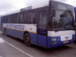 MAN. Автомобиль SU 263 (Автобус), 6 871 куб. см.