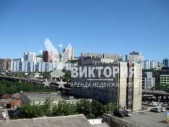 Гостинка, проспект Красного Знамени 51. Некрасовская, агентство, 18 кв.м. Вид из окна днем