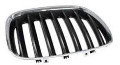 Решетка радиатора. BMW X5, E53