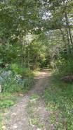 10 соток земли в районе Черной речки. 1 000кв.м., собственность