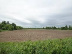 Продам земельный участок 1.6 Га. 16 000 кв.м., собственность, от частного лица (собственник)