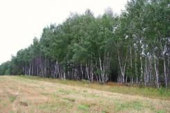 Участок сельскохозяйственного назначения в поселке Первомайский. 210 кв.м., собственность, вода, от частного лица (собственник)