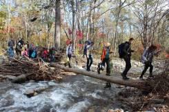 Для детей с родителями - поиск клада лесных разбойников!