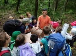 То, что надо детям! На поиски клада лесных разбойников!