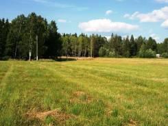 Участок в Гришино для сельского хозяйства, большой. собственность, от агентства недвижимости (посредник)