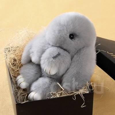 Фото кролика милого