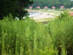Земельный участок на берегу моря. 2 165 кв.м., аренда, электричество, вода, от частного лица (собственник)