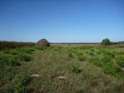 Продается участок ИЖС, 15 соток, д. Никиткино, МО. 1 500 кв.м., собственность, электричество, от агентства недвижимости (посредник)