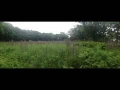 Продам земельный участок. 1 000 кв.м., собственность, от частного лица (собственник). Фото участка