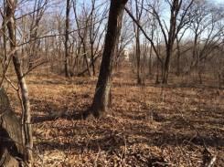 Продаю земельный участок в собственности. Дёшево. 800 кв.м., собственность, электричество, вода, от частного лица (собственник). Фото участка