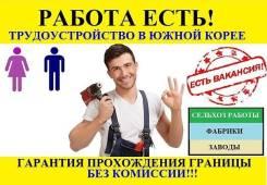 Срочные вакансии, билеты на паром! ЗП от 100 000 рублей! Гарантия!