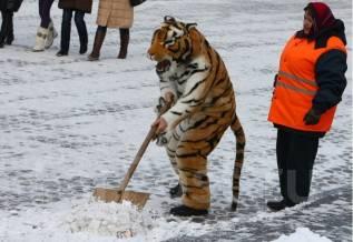 Уберем лед и снег! быстро! качественно