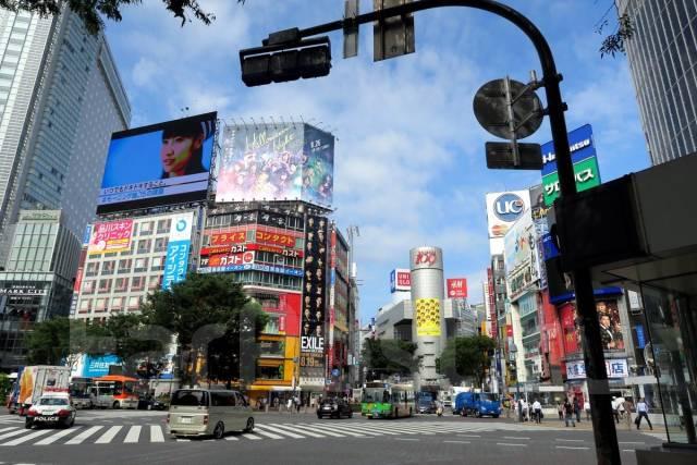 Япония. Токио. Экскурсионный тур. Япония. Тур в Токио. Ул. Семеновская 7А