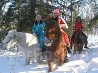 Конные прогулки по лесу. Зимние скидки - второй человек бесплатно. Акция длится до 31 января