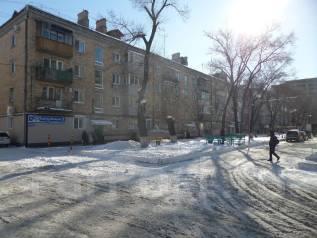 """2-комнатная, улица Некрасова 90б. Магазин """"Антарес"""", агентство, 42 кв.м. Дом снаружи"""