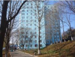 3комнатная квартира на 1этаже Авангарде. 63 кв.м., улица Светланская 133, р-н Центр. Дом снаружи