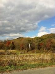 Продам участок в селе многоудобном. 4 000 кв.м., собственность, аренда, электричество, вода, от частного лица (собственник)