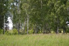 Продаю участок в селе Санниково. 900 кв.м., собственность, электричество, от частного лица (собственник)