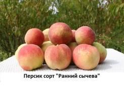 Персик.