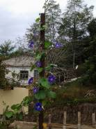 Земельный участок на берегу реки Кирпили. 2 500 кв.м., собственность, электричество, вода, от частного лица (собственник)