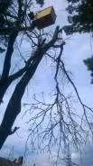 Пилим деревья от 500р